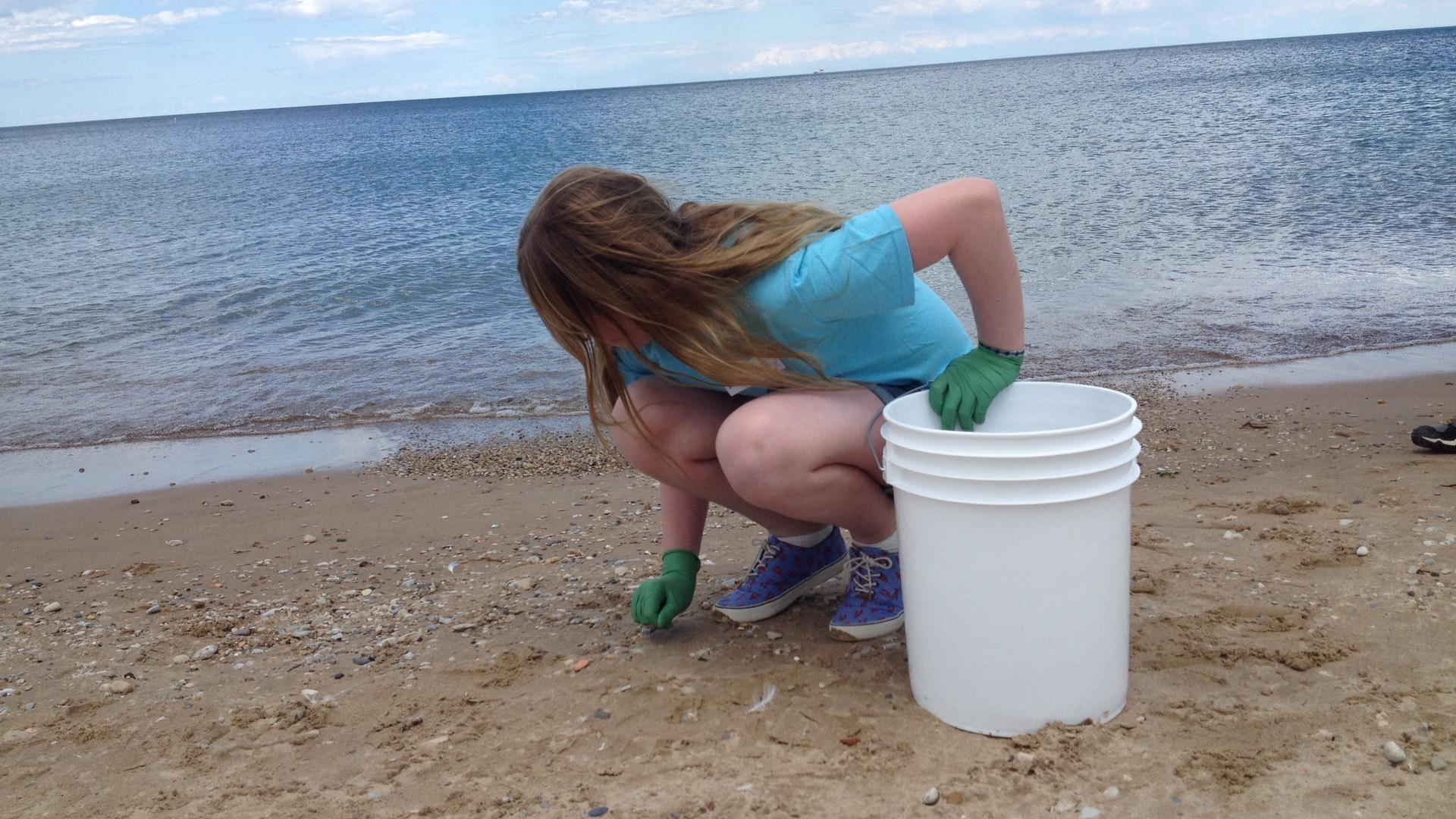 Volunteers are needed for daily beach cleanups through Sept. 26. (Courtesy of Shedd Aquarium)