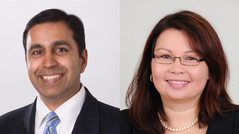 Raja Krishnamoorthi (left) and Tammy Duckworth