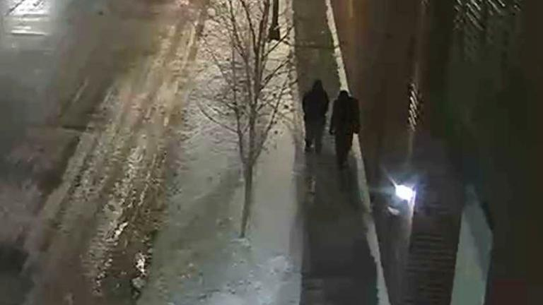 "This image provided by the Chicago Police Department and taken from surveillance video shows two people of interest in an attack on ""Empire"" actor Jussie Smollett walking along a street in the Streeterville neighborhood early Tuesday, Jan. 29, 2019. (Courtesy of Chicago Police Department via AP)"