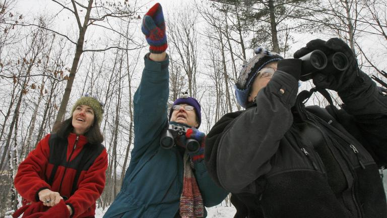In this Dec. 19, 2008, file photo, Jeannie Elias, left, Mary Spencer, and Alison Wagner look for birds in Fayston, Vermont, as they take part in The National Audubon Society's annual Christmas Bird Count. (AP Photo / Toby Talbot, File)