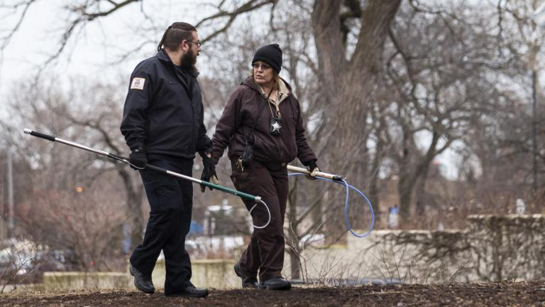 A Chicago Animal Care and Control inspector, right, and a warden from Cook County Animal Control fan out around the Peggy Notebaert Nature Museum in Lincoln Park to look for a possible coyote den, Thursday morning, Jan. 9, 2020. (Ashlee Rezin Garcia / Chicago Sun-Times via AP)