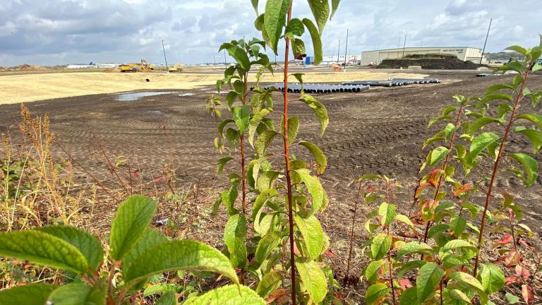 Construction on the Rockford Airport cargo expansion has come right to the edge of Bell Bowl Prairie. (Courtesy of Cassi Saari)