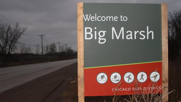 (Friends of Big Marsh / Facebook)