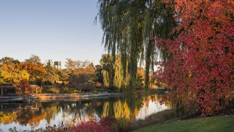 The Bulb Garden at the Chicago Botanic Garden in Glencoe. (Courtesy Chicago Botanic Garden)