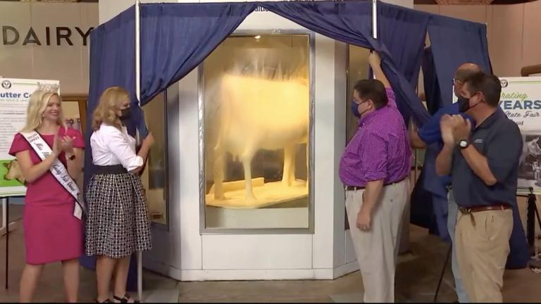 The Illinois State Fair Butter Cow is revealed on Wednesday, Aug. 11, 2021. (State of Illinois livestream)