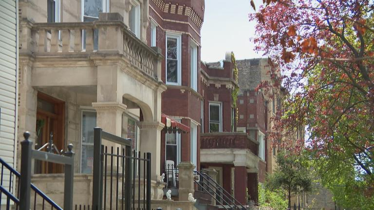 A residential street in Chicago's Albany Park neighborhood. (WTTW News)
