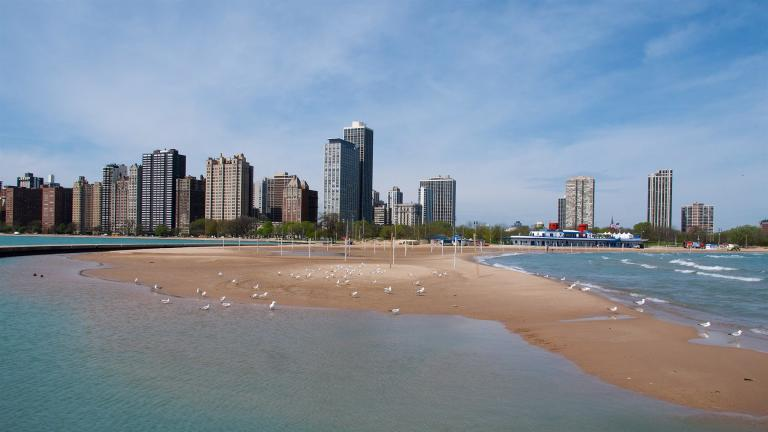 North Avenue Beach in 2018. (Frank Fujimoto / Flickr)