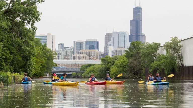 Shedd Aquarium's Kayak for Conservation program aims to introduce residents to the Chicago River ecosystem and the wildlife that call the waters home. (Hilary Wind / Shedd Aquarium)
