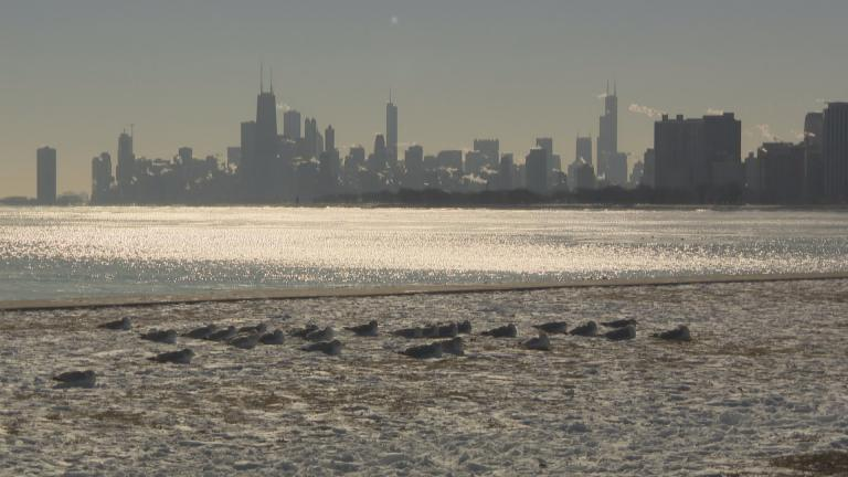 8558593a Chicago ushered in 2018 with a record-setting high temperature of 1 degree  on New Year's Day. With cold temperatures expected to persist, the city  could tie ...