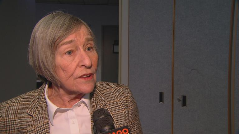 State Rep. Barbara Flynn Currie (Chicago Tonight)
