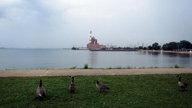 Chicago's newest dog park will be located at Calumet Park, near the U.S. Coast Guard Station at Calumet Harbor. (Bohao Zhao / Wikimedia Commons)