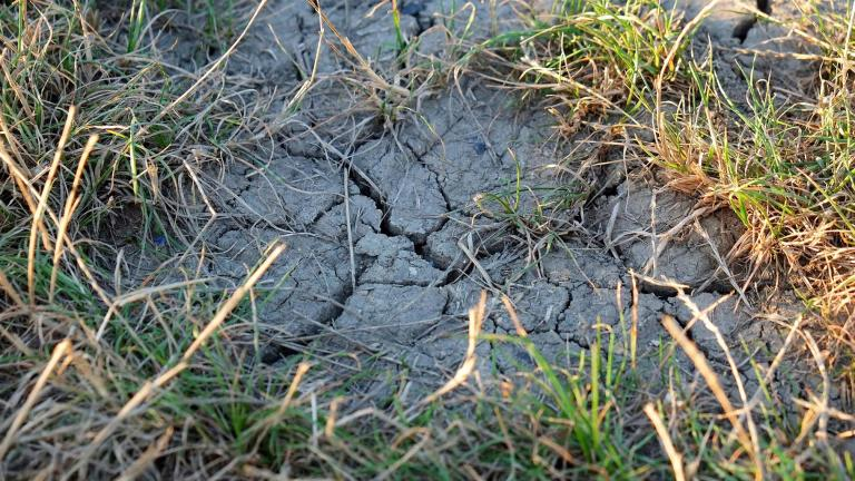 Chicago is experiencing one of its driest springs ever. (Holger Schue / Pixabay)