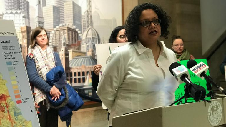 Kimberly Wasserman, executive director of the Little Village Environmental Justice Organization, speaks during a press conference Thursday in response to a new renewable energy plan unveiled by Mayor Rahm Emanuel. (Courtesy Little Village Environmental Justice Organization)