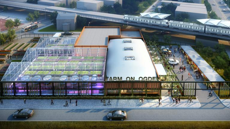 A graphic rendering of the soon-to-be completed Farm on Ogden, which opens June 22. (Courtesy Chicago Botanic Garden)