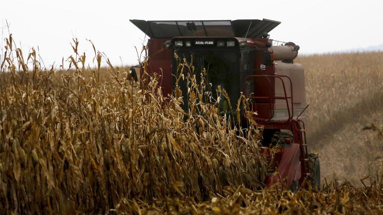 In this Dec. 4, 2017, file photo, a farmer harvests crops near Sinsinawa Mound in Wisconsin. (Eileen Meslar / Telegraph Herald via AP, File)