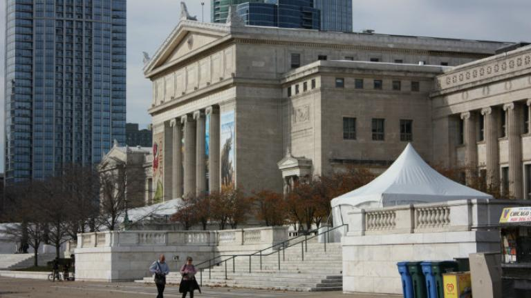 The Chicago Field Museum (Chloe Riley)