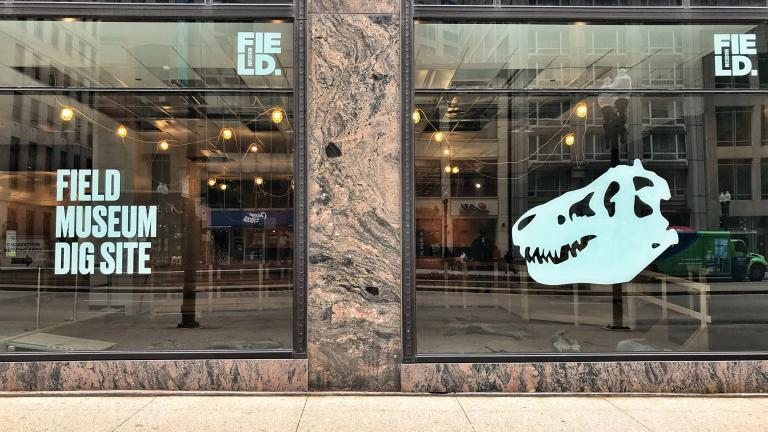 "The Field Museum's new pop-up ""Dig Site"" (333 N. Michigan Ave.) aims to replicate a location where paleontologists might search for fossils. (Courtesy The Field Museum)"