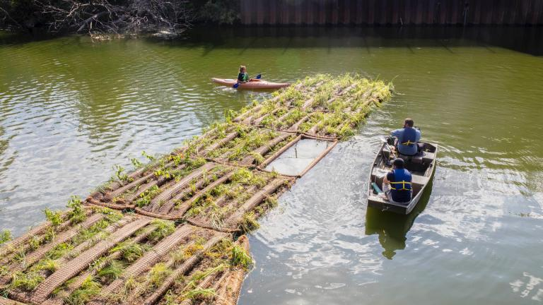 Floating habitat being positioned on the Chicago River. (Shedd Aquarium / Brenna Hernandez)