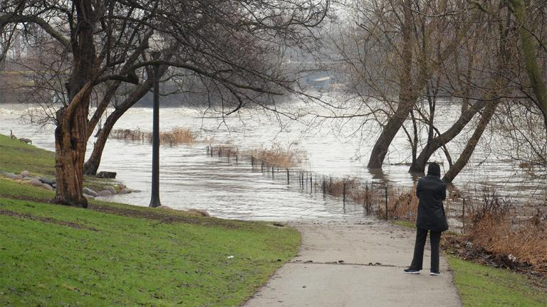 Flooding in Albany Park in April 2013 (Center for Neighborhood Technology / Flickr)