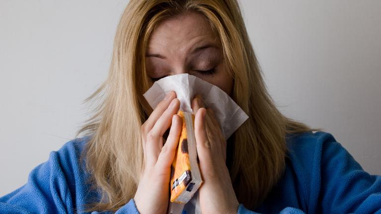 A new study by researchers at the University of Chicago analyzes the geographical origins of the seasonal flu.