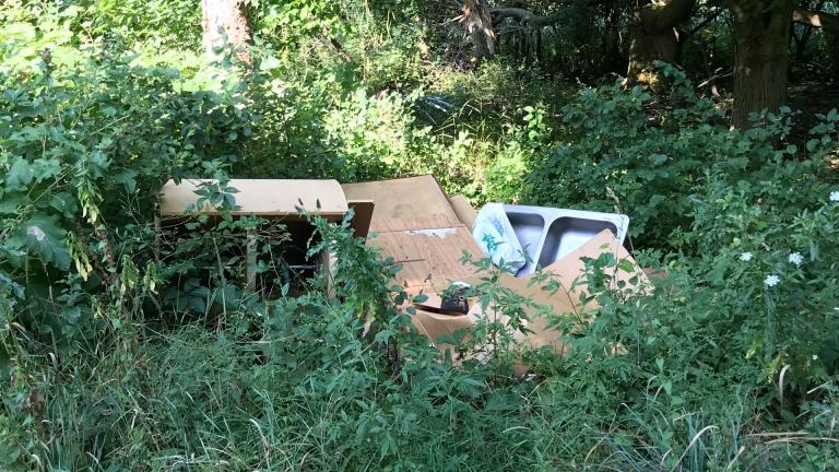 People dump everything, including the kitchen sink, in Cook County's forest preserves. (Courtesy of the Forest Preserve District of Cook County)