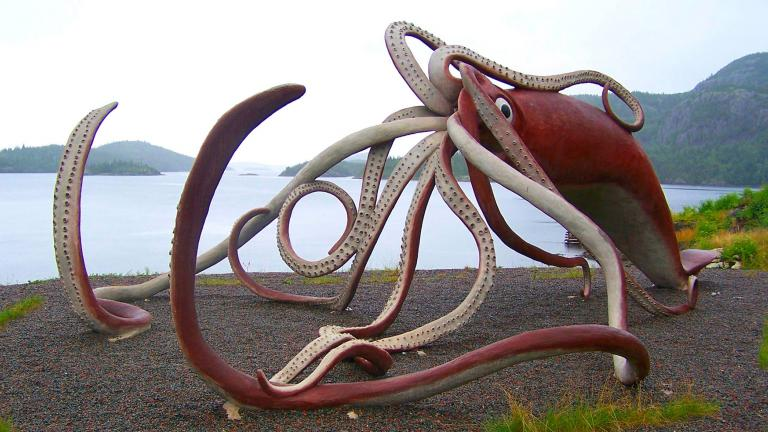 A model of a giant squid in Glover's Harbour, Newfoundland. (Robert Hiscock / Flickr)