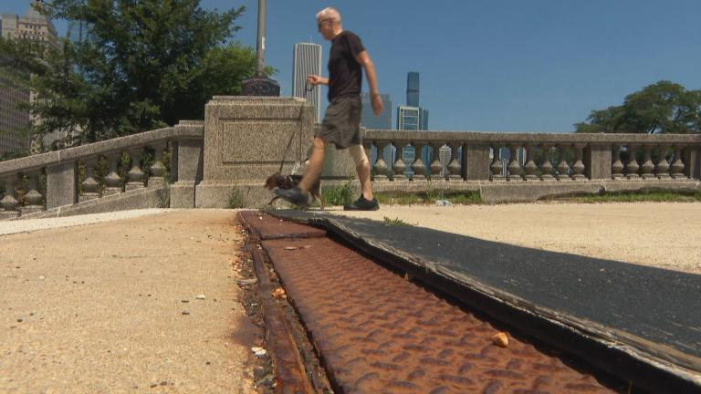 Grant Park in Chicago. (WTTW News)
