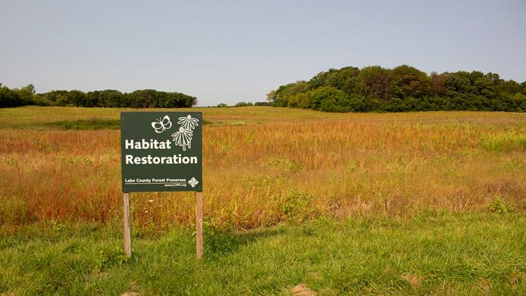 Former farmland within the Grant Woods Forest Preserve will become a demonstration site for climate-adapted seeds. (Courtesy of Lake County Forest Preserves)