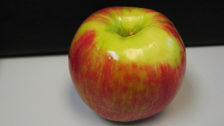 Honeycrisp apples are among the six varieties of apples being recalled due to possible listeria contamination.  (Keagiles via Wikimedia Commons)