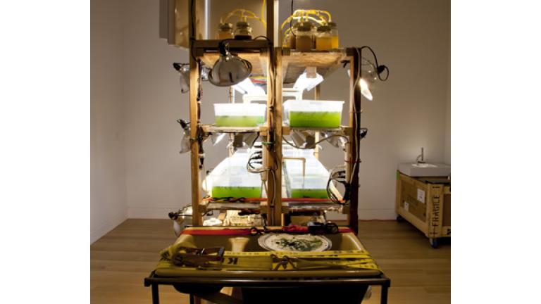 """Algal Biodiesel Processing Station III"" by Marissa Lee Benedict; courtesy of DePaul Art Museum"
