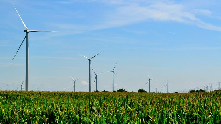 Wind turbines at the Mendota Hills Wind Farm in Steward, Illinois. (Tom Shockey / Flickr)