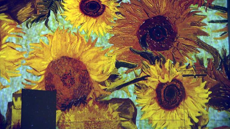 """Inside the """"Immersive Van Gogh"""" exhibit in Chicago. (WTTW News)"""
