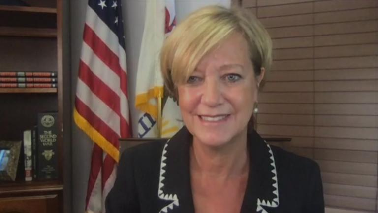 """Illinois Republican Jeanne Ives appears on """"Chicago Tonight"""" via Zoom on Tuesday, Aug. 25, 2020. (WTTW News)"""
