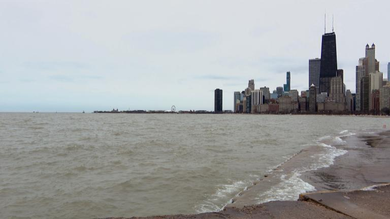 Lake Michigan and the Chicago skyline on Wednesday, Feb. 5, 2020. (WTTW News)