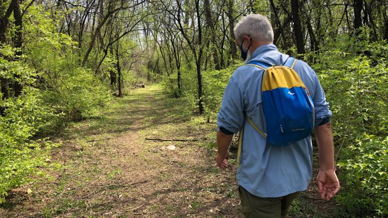 Liam Durnan hikes in Cook County's Spring Lake Nature Preserve. (Patty Wetli / WTTW News)