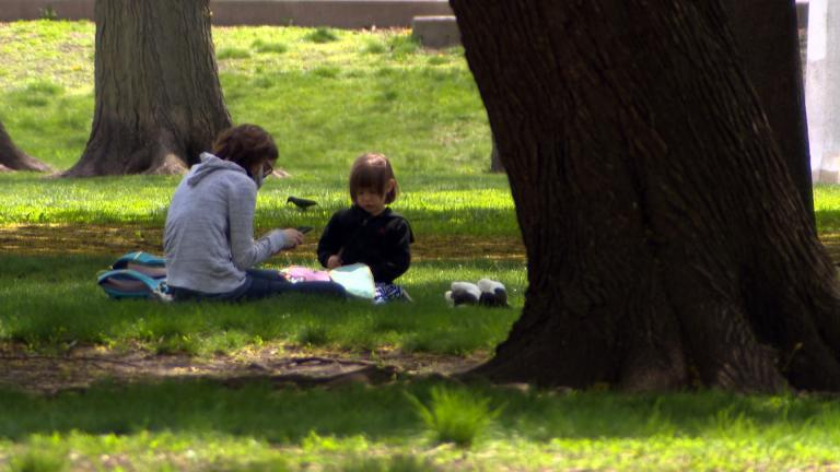 It was a good day for a picnic in Chicago on Tuesday, until the weather changed. (WTTW News)