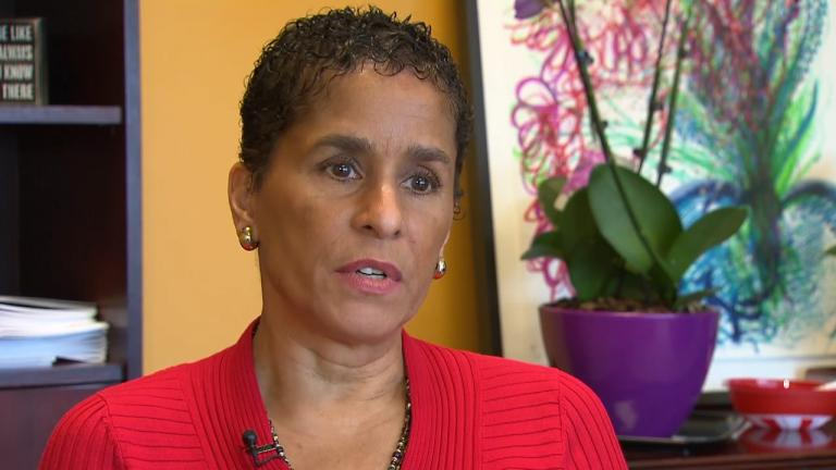 "Family and Support Services Commissioner Lisa Morrison Butler appears in a ""Chicago Tonight"" report on March 27, 2017. (WTTW News)"