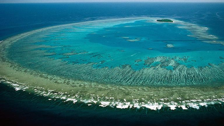 Great Barrier Reef (Lock the Gate Alliance / Flickr)