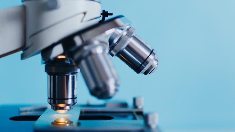 An Illinois lab played a key role in the development of penicillin. (Konstantin Kolosov / Pixabay)