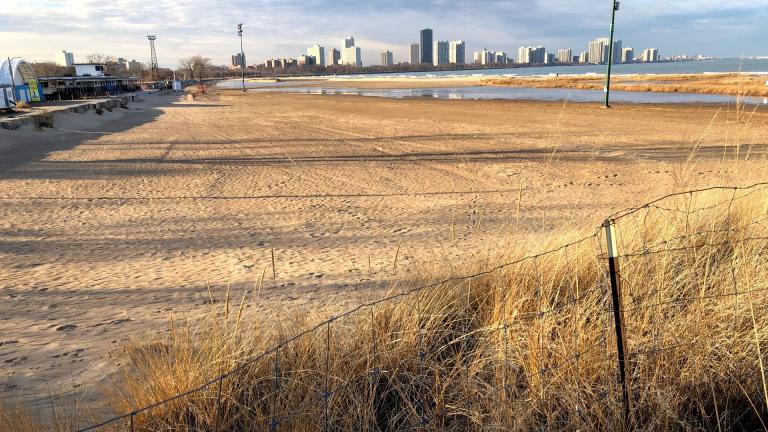 A section of open beach is being added to the protected Montrose Dune Natural Area. (Patty Wetli / WTTW News)