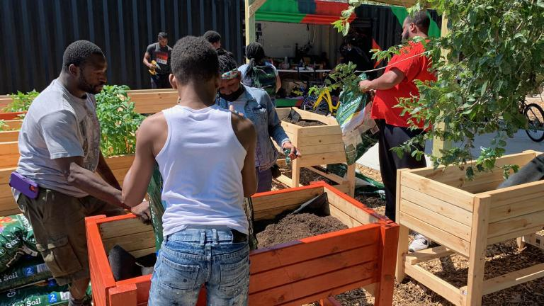 Community gardening in North Lawndale (Courtesy Young Mens Educational Network Chicago)