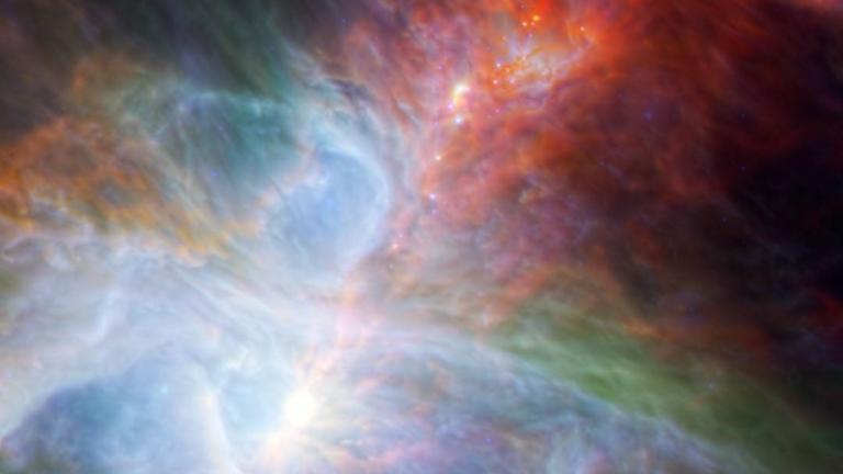 Baby stars in Orion Nebula