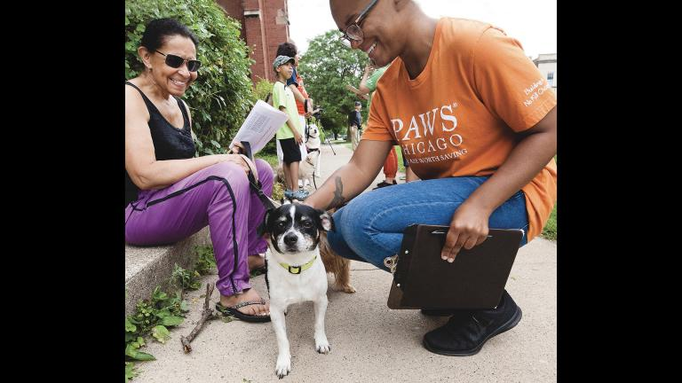 Since 2014, PAWS Chicago has operated a door-to-door outreach program aimed at reaching areas of the city with the highest rates of homeless pets. (Courtesy PAWS Chicago)