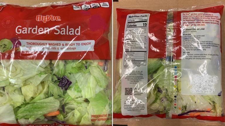 Packaged garden salads from various grocery stores, including Hy-Vee, have been linked with an outbreak of an intestinal illness. (Courtesy FDA.gov)
