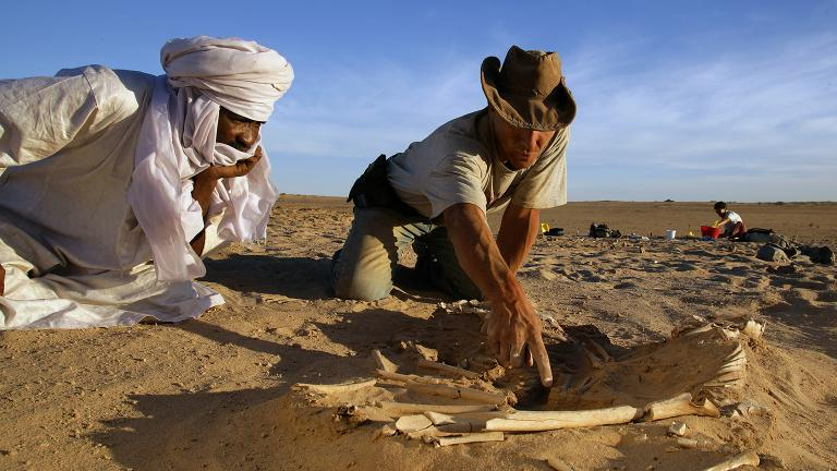 University of Chicago paleontologist Paul Sereno, right, in Niger. (Credit: Mike Hettwer)