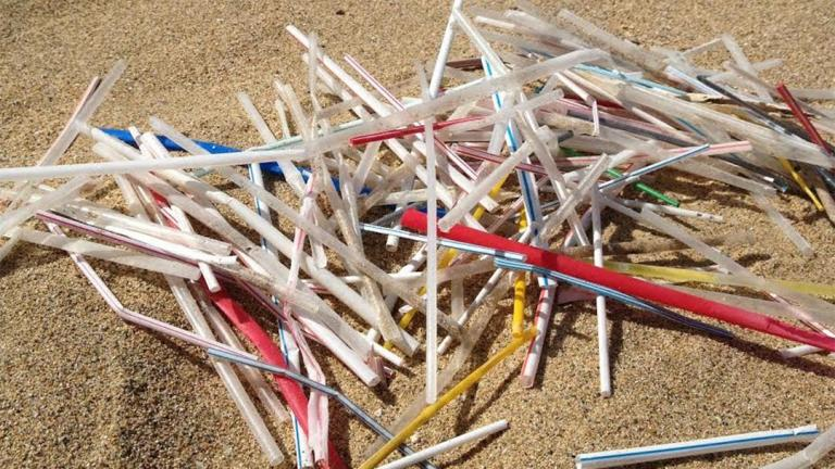 (Plastic Pollution Coalition)