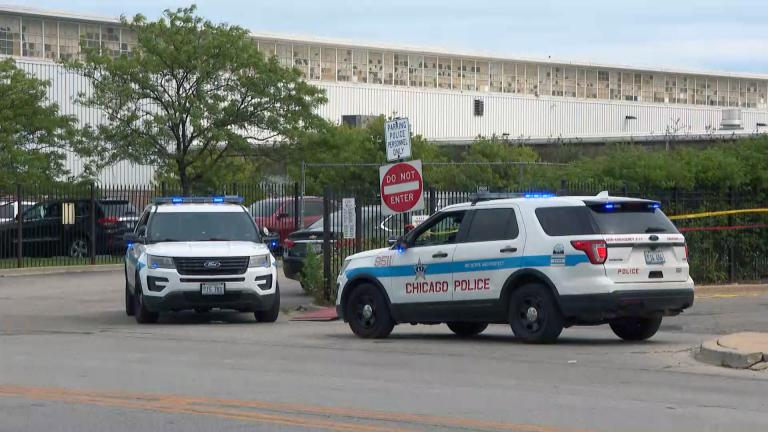 A file photo shows Chicago police SUVs. (WTTW News)