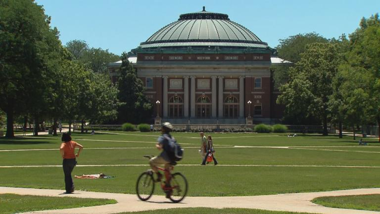 The quad at the University of Illinois at Urbana-Champaign. (WTTW News)