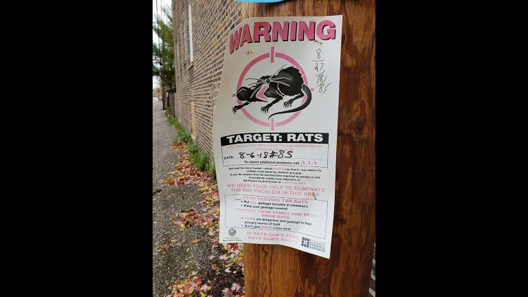 (Courtesy Landmark Pest Management)