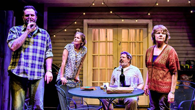"From left: Joseph Wiens, Cortney McKenna, H.B. Ward and Linda Reiter in Shattered Globe Theatre and Theater Wit's Chicago premiere of ""The Realistic Joneses."" (Photo by Evan Hanover)"